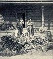 E. Pfitzenmayer, Sibirische Rauchwaren (1908) Jakuten beim Sortieren von Eichhornfellen.jpg