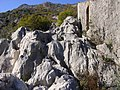 E80, Montenegro - panoramio (4).jpg