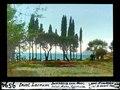 ETH-BIB-Insel Locrum, Durchblick zum Meer, Salat, Mohn, Cypressen-Dia 247-09594.tif