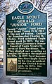 Eagle Scout-Ford.jpg