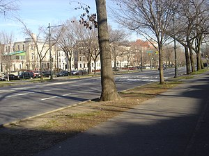 Parkway - Brooklyn's Eastern Parkway, the world's first parkway, according to the New York City Department of Parks and Recreation.