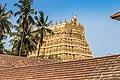 Eastern Tower Gopuram - Padmanabha Swamy Temple Trivandrum Kerala India4.jpg