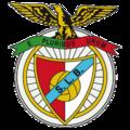 Emblema Benfica 1930 (Sem fundo).png