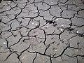 En tiempo de secas - panoramio (1).jpg