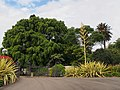 Entrance of Royal Botanic Gardens - 2013.04 - panoramio.jpg