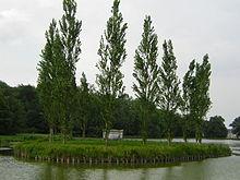 """Île des peupliers (""""Insel der Pappeln"""") mit dem Grabmal Rousseaus (Quelle: Wikimedia)"""