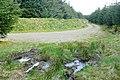 Esgairnantau - geograph.org.uk - 1300843.jpg