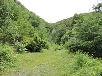 Ezeroto protected area, Bulgaria 02.JPG