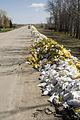 FEMA - 40904 - Used sand bags line the roadway in Moorhead, MN.jpg