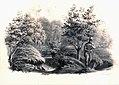 FH A Algemene kaarten litho bos Arentsburg RMO corr.jpg