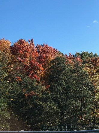 Grand Traverse County, Michigan - Fall in Grand Traverse County