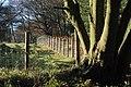 Fence Corner, Snipes Dene Wood - geograph.org.uk - 630728.jpg