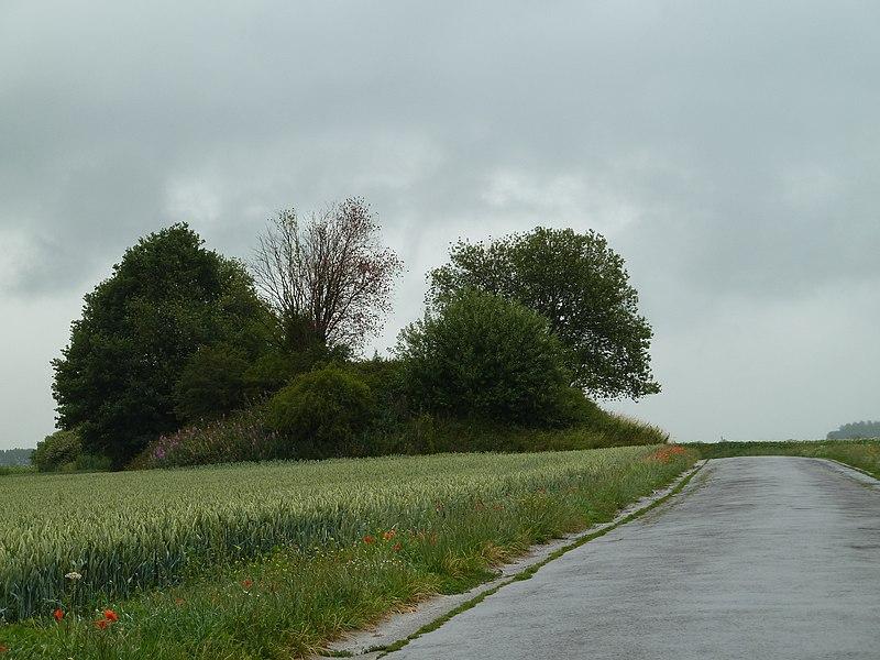 Tumuli de Seron, Fernelmont, Belgique
