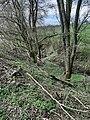 Fessbach 202104 11.jpg