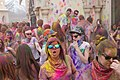 Festival Of Colors (65380549).jpeg