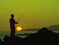 Fishing at San Pedro, California - USA.jpg