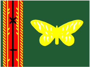 Oro Province - Image: Flag of Flag Oro new