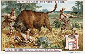 Liebig's Extract of Meat Company - Italian Advertising for Liebig's Extract of Meat, c. 1900