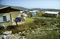 Flickr - Government Press Office (GPO) - Moshav Kachal in the Galilee.jpg