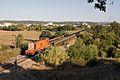 Flickr - nmorao - Distribuição, Rossio ao Sul do Tejo, 2009.09.15.jpg