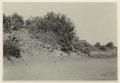Floden som rinner genom ruinstaden (under torrtiden) - SMVK - 0307.a.0062.tif