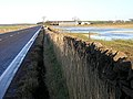 Flooding Beside A70 Near Millmoor - geograph.org.uk - 283785.jpg