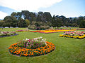 Floral gardens outside the Conservatory of Flowers.jpg