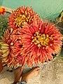 Flower.18.jpg