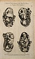 Foetuses in utero; six figures showing cross-sections of foe Wellcome V0007998.jpg