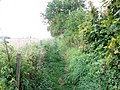 Footpath, Combe Down - geograph.org.uk - 1561674.jpg