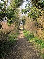 Footpath, Holt to Little Chalfield - panoramio.jpg