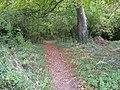 Footpath, Trarrant Gunville - geograph.org.uk - 1027688.jpg