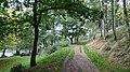 Footpath - geograph.org.uk - 584294.jpg