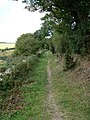 Footpath Between Six Acre Wood and Six Acre Farm - geograph.org.uk - 53996.jpg