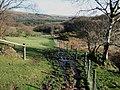 Footpath east of Broomage Wood - geograph.org.uk - 313592.jpg