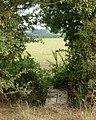 Footpath southeast from Flecknoe to Staverton (5) - geograph.org.uk - 1498982.jpg