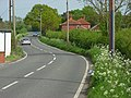 Forest Green Road, the B3024, Holyport - geograph.org.uk - 799121.jpg