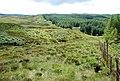 Forest boundary - geograph.org.uk - 495396.jpg