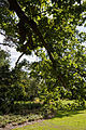 Forty Hall garden lawn, Enfield, London 2.jpg