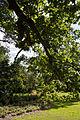Forty Hall garden lawn, Enfield, London 2.jpg