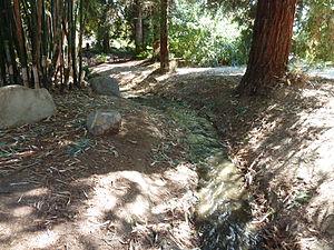 Fullerton Arboretum - Inside of the Fullerton Arboretum