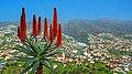 Funchal Madeira January 2014 - panoramio (8).jpg