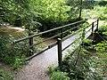 Fussgänger Brücke über die Murg, Oberwangen TG 20190623-jag9889.jpg