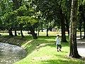 Główna aleja w Parku Róż.jpg