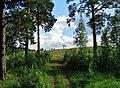 G. Miass, Chelyabinskaya oblast', Russia - panoramio (169).jpg