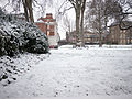 Gardens in the snow (8397994057).jpg