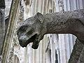 Gargouille Amiens 1.jpg