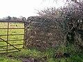 Gate Pillar, Lower Road, Llanteg - geograph.org.uk - 1051219.jpg