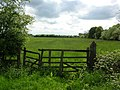 Gate into meadow - geograph.org.uk - 431702.jpg