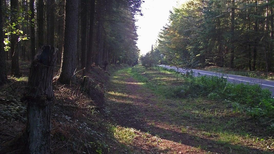 Hier links takt de buurtspoorlijn naar Gedinne dorp af.